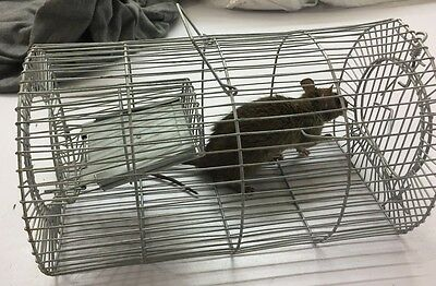 large traditional METAL RAT TRAP CAGE METAL MOUSE CAGE ANIMAL PEST CONTROL