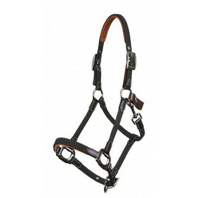 Lemieux Break Away Headcollar /Halter