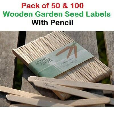 50 Wooden Garden Plants Seedling Seeds Labels Cuttings with Pencil Recyclable UK