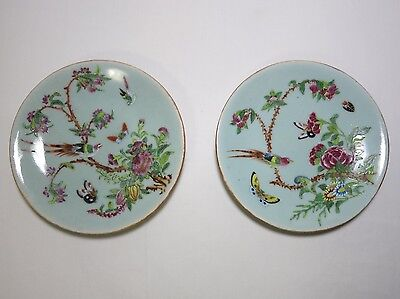 Antique Chinese Celadon Plate Famille Rose Hand Painted 19th Cent. China -- 2 pc