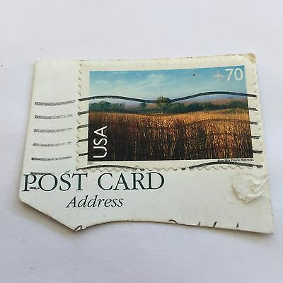 USA Open Field Stamp