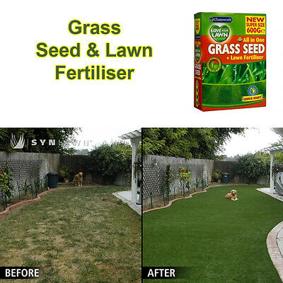 GARDENING Chatsworth All In One Grass Seed + Lawn Fertiliser LARGE 600 GMS PACK