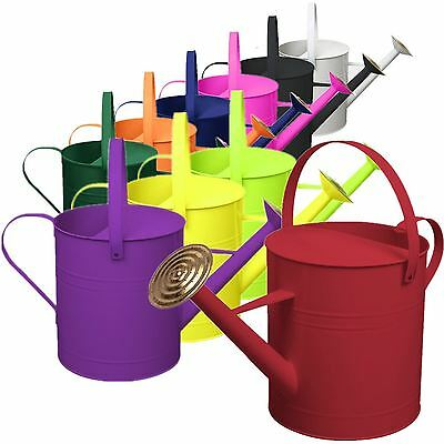 CrazyGadget® 9 Litre Metal Steel Watering Can with Brass Rose Assorted Colours