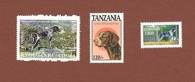 German Shorthaired Pointer dog postage stamps, set of 3 MNH