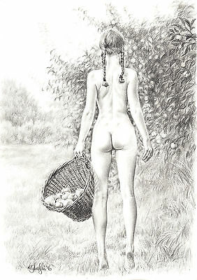 NUDEFEMALE ART STUDY  A3 PRINT of the original pencil drawing