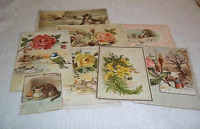 8 VintageTrading Cards Lion Coffee Woolson Spice Co.