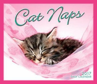 NEW Cat Naps 2017 Desk Calendar **FREE SHIPPING** MAKES A GREAT GIFT!