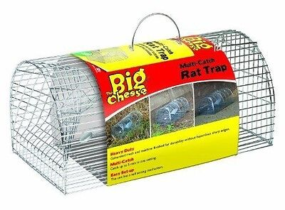 The Big Cheese Large Multi Catch Rat Trap Professional Strength  E57