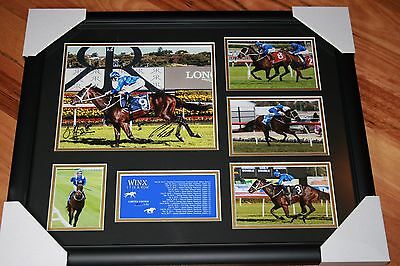 On Sale!! WINX HORSE RACING MEMORABILIA SIGNED FRAME LIMITED; 17 IN A ROW!!