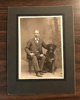 Antique 1890s Cabinet Card Photograph Man with Newfoundland Dog !!!
