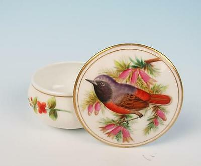 c. 1881 Royal Worcester Hand Painted Hopewell Bird Box Jar Antique Porcelain