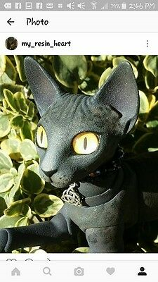 "5 DAY ONLY SALE!!Anthro Eve The Cat ""Oriental"" 10cm w/Cutsom Faceup NEW PHOTOS!!"
