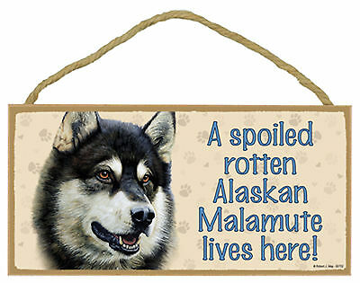 A spoiled rotten Alaskan Malamute lives here Wood Puppy Dog Sign Plaque USA Made