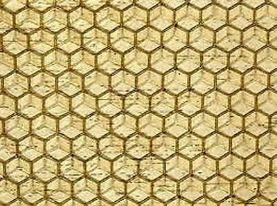 10X Shallow Foundation (Unwired) - Beeswax  -  National Bee Hive Super