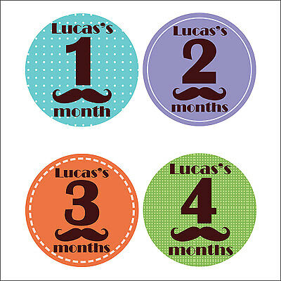 Personalised Monthly Baby Stickers, Milestone Stickers, Baby Shower Gift_B018
