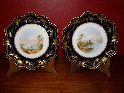 Antique Late 19th Century Aynsley's Pair Painted Plates w/ Cobalt Blue Borders