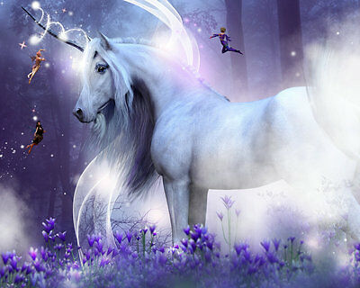 Animal Art wall Home decor oil painting horse unicorn Printed on Canvas Nys128
