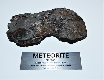 NANTAN IRON METEORITE -Genuine- 369.1 grams 13 oz w/ Label & COA#12978 26o