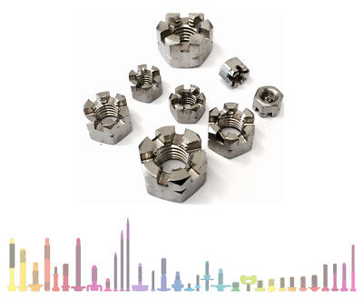 M5 M6 M8 M10 M12 M16 M20 Stainless Steel A2 Hexagon Slotted Castle Nuts Din 935