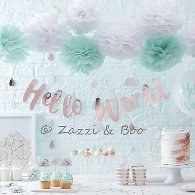 HELLO WORLD BABY SHOWER Tableware Party Gender Reveal Neutral Mint & Rose Gold
