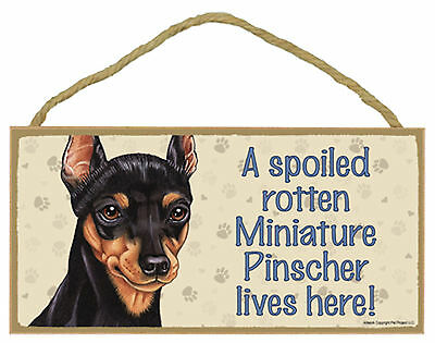 A spoiled rotten Miniature Pinscher lives here Wood Min Pin Dog Sign Made in USA