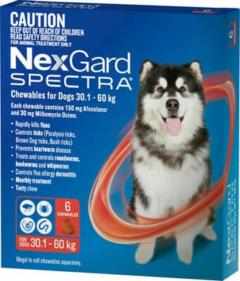 Nexgard Spectra for dogs 30-60 kg Red pack of 6 Extra Large dogs