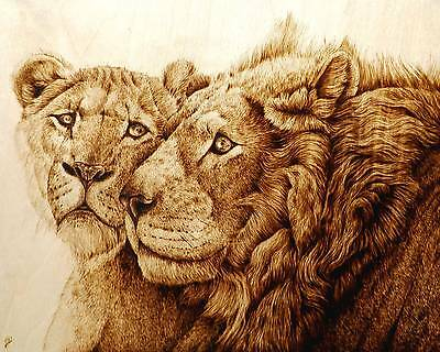 """""""lions After The Hunt"""" Original Cat Animal Art-Drawing With Fire/woodburning"""