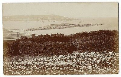 SCILLY ISLES General View of St Mary's 1911, RP Postcard by King, Unused