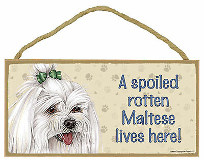 A spoiled rotten Maltese lives here! Wood Puppy Dog Sign Plaque USA Made
