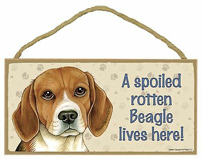 A spoiled rotten Beagle lives here! Wood Puppy Dog Sign Plaque Made in USA