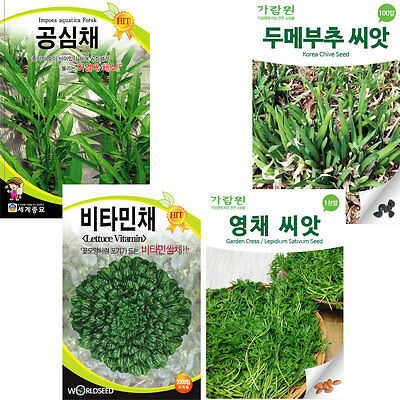 Korean vegetable herb seeds Tree Garden Seed Farm Agriculture(Chive/Sativum)