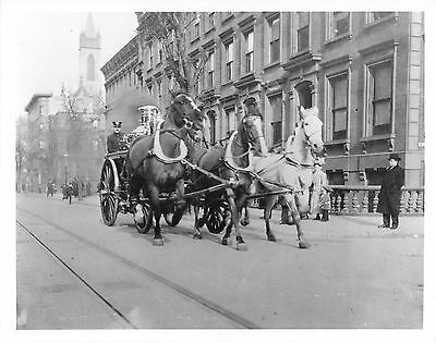 Horse Drawn Fire Truck 8X10 Photo Picture Firefighting 1890's