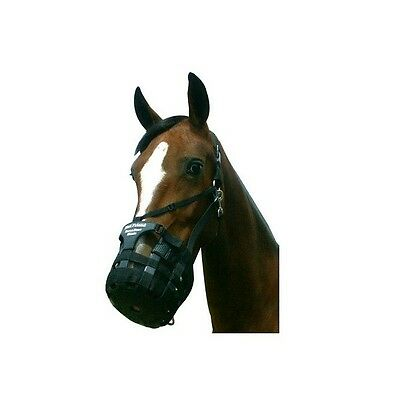 Best Friend Have A Heart Grazing Muzzle with Breakaway Halter XL