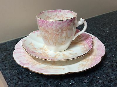 Shelley Lilly Pink & Cream Cup, Saucer & Side Plate Trio 1910 Made in England
