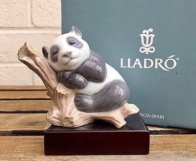 LLADRO -LUCKY PANDA- ANIMAL FIGURE MODEL 8105 not POLAR BROWN GRIZZLY -BOXED-