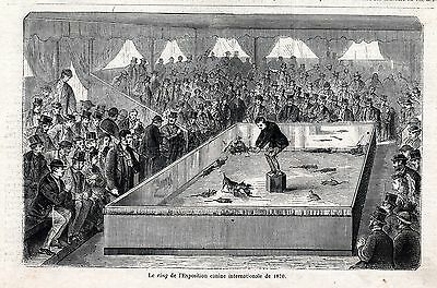 Dog Manchester Terrier Killing Rats in Show Ring, 1870s Antique Engraving Print