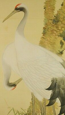 Hanging Scroll Japanese Painting Ink Asian Old Crane Pine Antique Japan art a859