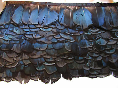 Pheasant Feather Fringe Many Colours 1 Metre or 30cm Sewing/Costume/Millinery