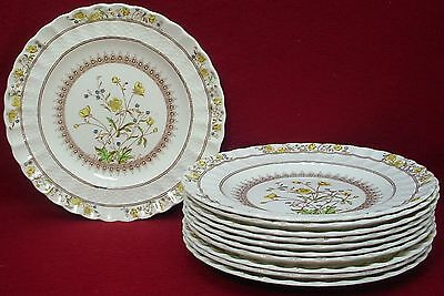 "SPODE china BUTTERCUP original BREAD PLATE 5-1/2"" set of FIVE (5)"