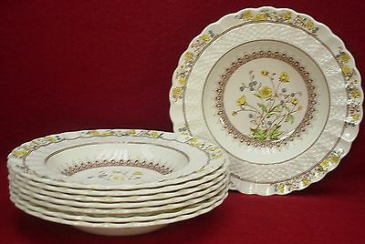 """SPODE china BUTTERCUP original RIMMED SOUP or SALAD BOWL 7-3/4"""" set of EIGHT (8)"""