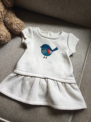 NWT Gymboree Baby Girl Little Dress 3-6 Months  Adorable!!
