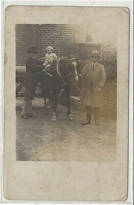 Horse Postcard - COURT-REAL PHOTO- Family Group and Harnessed horde