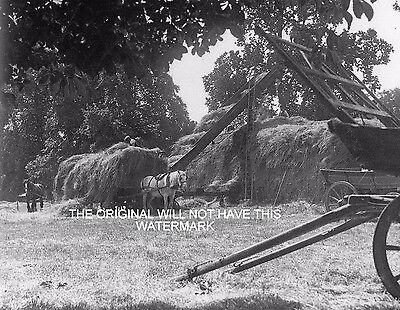 Building A Hay Rick Purley Nr Reading 1939 Vintage Mounted Print Farming History