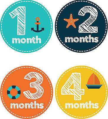 Personalised Monthly Baby Stickers, Milestone Stickers, Baby Shower Gift_B022