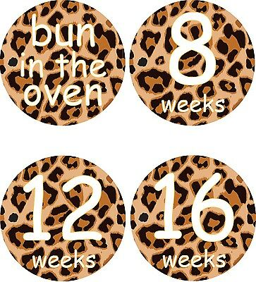 Personalised Weekly Pregnancy Stickers, Belly Stickers, Baby Bump Stickers_P006