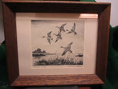 Churchill Ettinger Limited Edition Etching Print Hand Signed Pintails