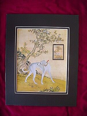 Picture of Prize Dog Smooth saluki stamp with mounted stamp 1972 China Matted