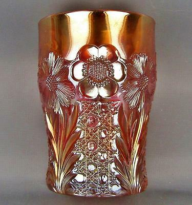 CARNIVAL GLASS - US GLASS COSMOS & CANE Marigold Tumbler 3660