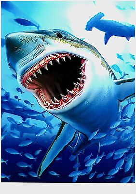 shark vivid 3D Lenticular  Holographic Stereoscopic Picture Wall Art