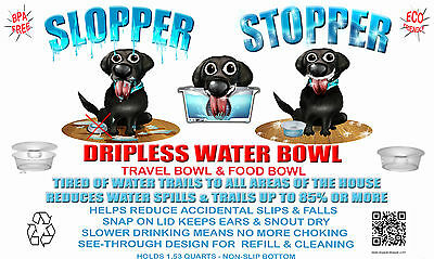 Slopper Stopper Dripless Water Bowl (From Owner/Inventor)